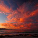 wild autumn sunset. waubs bay, bicheno, tasmania by tim buckley | bodhiimages