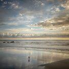Vastness of the West Coast by Linda Cutche