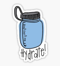 Hydrate Water Bottle Sticker