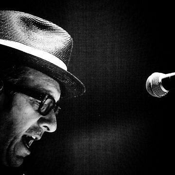Elvis Costello by nord