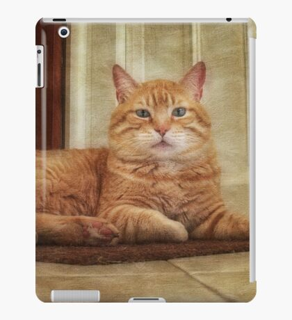 """Shaman"" My  Cat iPad Case/Skin"