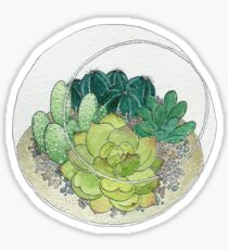 Succulent Bowl Sticker