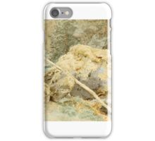 Werner Holmberg () Stone iPhone Case/Skin