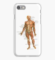 Body Muscles iPhone Case/Skin