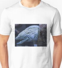 The moray T-Shirt