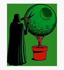 LORD VADER GARDENER Photographic Print