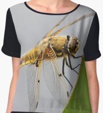 Four-spotted Chaser Dragonfly Women's Chiffon Top
