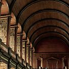 Long Room - Trinity College Dublin by Louise Fahy