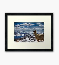 Looking at my living room ... Framed Print