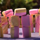 Mallow henge by James Rutherford