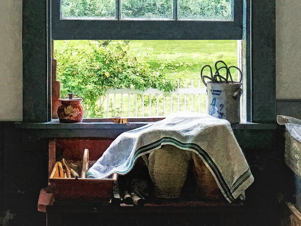 View From Kitchen Window by Susan Savad