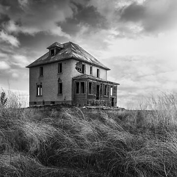 South Facing - BW by TheKav