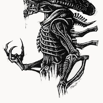 Sketchy Xeno by sweav