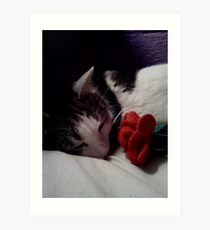 Snuggle Muffin With a Rose Art Print