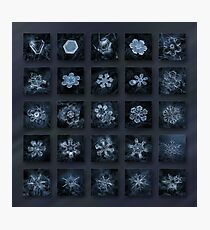 Snowflake collage - Season 2013 dark crystals Photographic Print