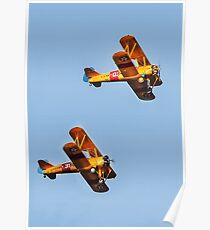 Pre-WWII Biplanes Poster