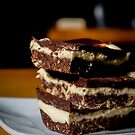 Nanaimo Bars by SLRphotography
