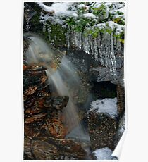 Mini Frozen Fagus Falls Poster