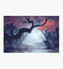 Kodama The Tree Hugger Photographic Print
