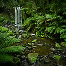 Hopetoun Falls Revisited by Hicksy