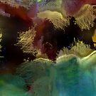 Sea Bed by Anivad - Davina Nicholas