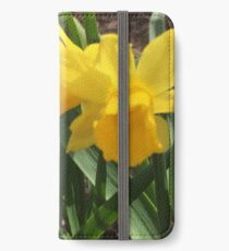 Baby Daffodil If you like, please purchase, try a cell phone cover thanks iPhone Wallet/Case/Skin