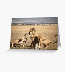 don't mess with me! Greeting Card