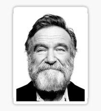 robin williams beard Sticker