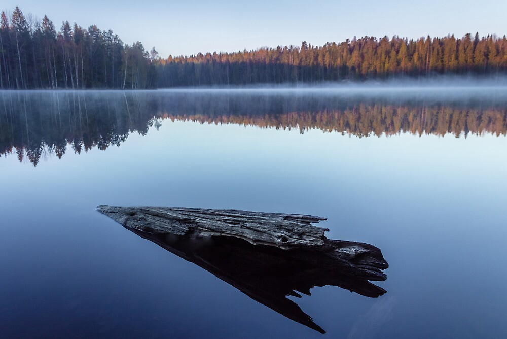 Dreamstate II by Matti Ollikainen