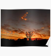 Cloudy May Sunset Panorama Poster
