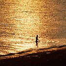 Sunset Swim by mikebov