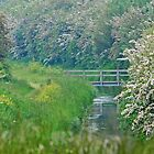 Bridge at the Fen II by SweetLemon