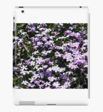 Lavender Layer iPad Case/Skin