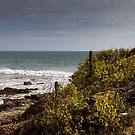 Seascape in Ecuador by Paul Wolf