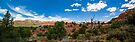 Trail Panorama in Sedona Area by eegibson