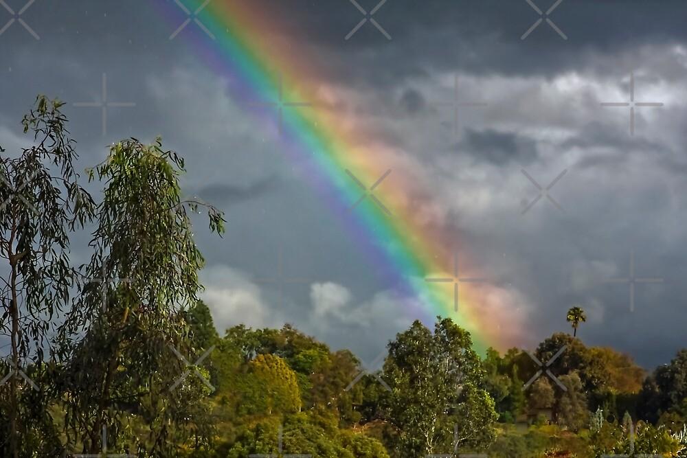 California Rainbow by Heather Friedman