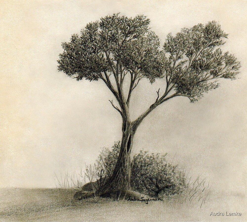 The Tree Quietly Stood Alone by Audra Lemke