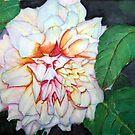 Dahlia Beauty by Christiane  Kingsley
