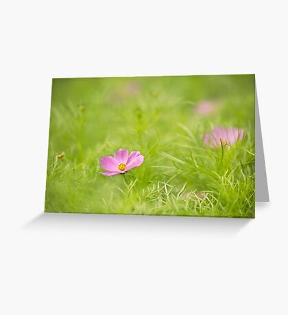A Little Cosmos Greeting Card