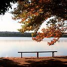 Lakeside 2 by MikeO