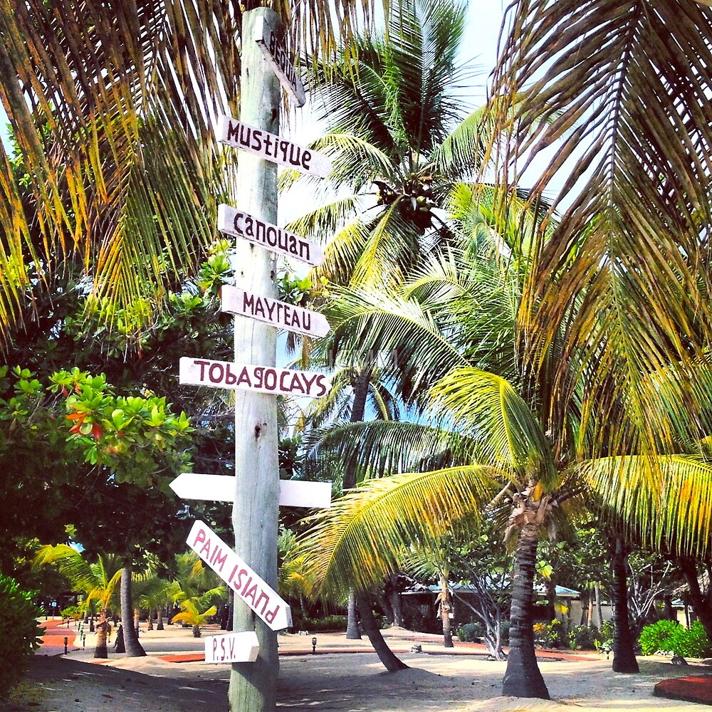 Choices, Palm Island, Caribbean by JCMM