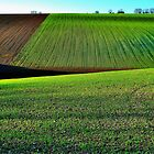 Crop's by NaturesEarth