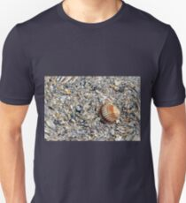 abstract shells on the beach T-Shirt