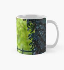 A Nice Spring Day Mug