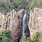 Goomoolahra Falls, Springbrook, Qld Australia by Kathie Nichols