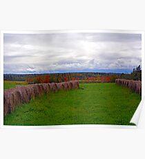Hay Fields of Nova Scotia Poster
