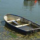 Sunken boat by Janis Read-Walters