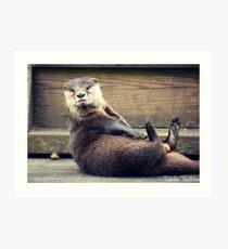 The Otter and His Pebble Art Print