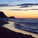 Dawn - Avoca Beach NSW Australia by Of Land & Ocean - Samantha Goode