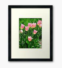 Oh So Pink! Framed Print